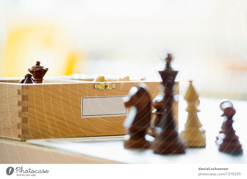 Won Leisure and hobbies Playing Chess Wood Joy Colour photo Subdued colour Close-up Deserted Copy Space top Light High-key Shallow depth of field