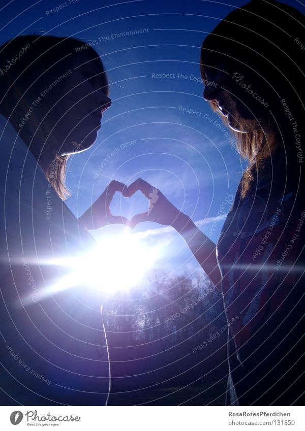 Friendship. Sun Exterior shot Sunbeam Fingers Hand Together Love Heart Happy Joy Youth (Young adults) Shadow Blue Sky Contrast