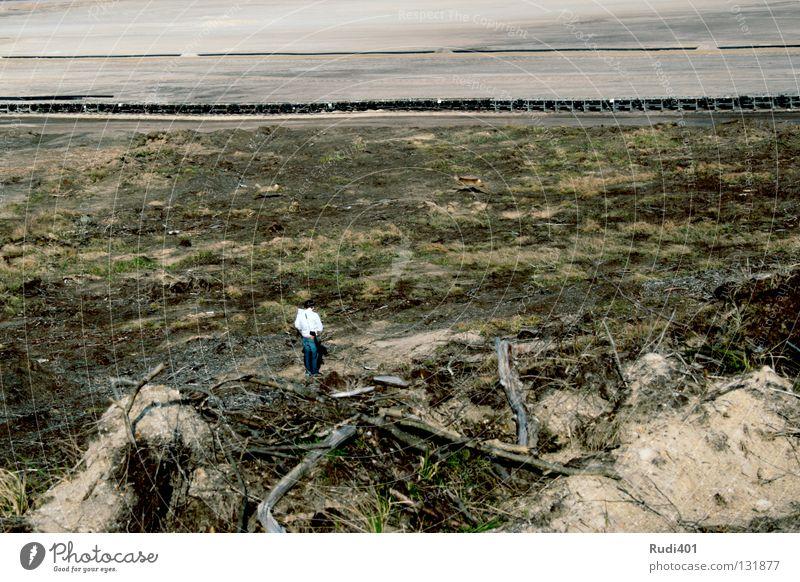 Animal Loneliness Sand Jump Desert Surprise Mammal Photographer Roe deer Mining