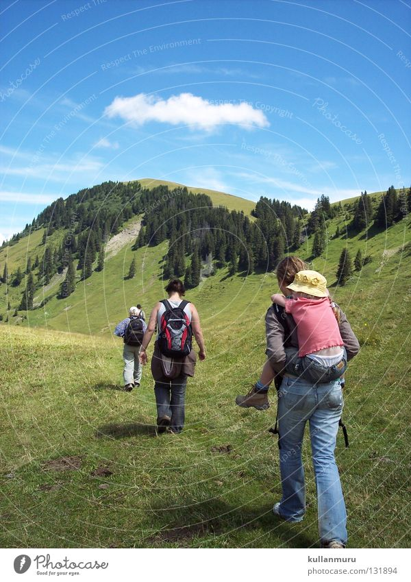 Forward together Hiking Vacation & Travel Together Switzerland Clouds Beautiful Guided Carrier Single-minded Forest Slope Grass Fresh Green Flat Meadow