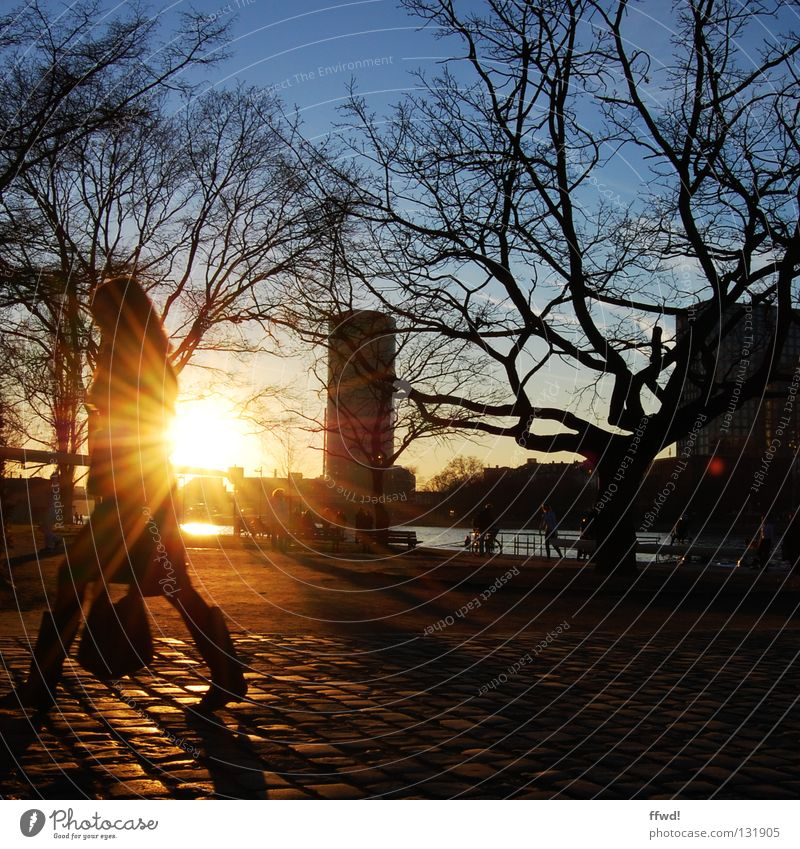 Woman Human being Tree Sun Winter Moody Going Walking Action River To go for a walk Branch Traffic infrastructure Cobblestones River bank