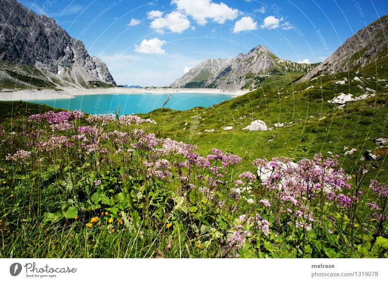 Sky Nature Vacation & Travel Blue Green Summer Water White Relaxation Flower Landscape Calm Clouds Mountain Grass Exceptional