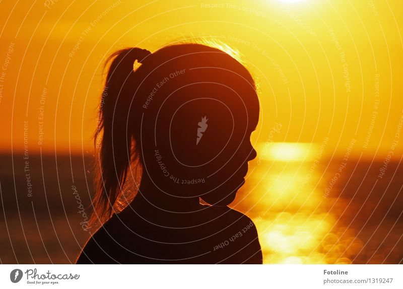 Girl silhouette by the sea in the sunset Human being Feminine Child Infancy Head Hair and hairstyles Nose 1 Elements Water Summer Beautiful weather Warmth coast