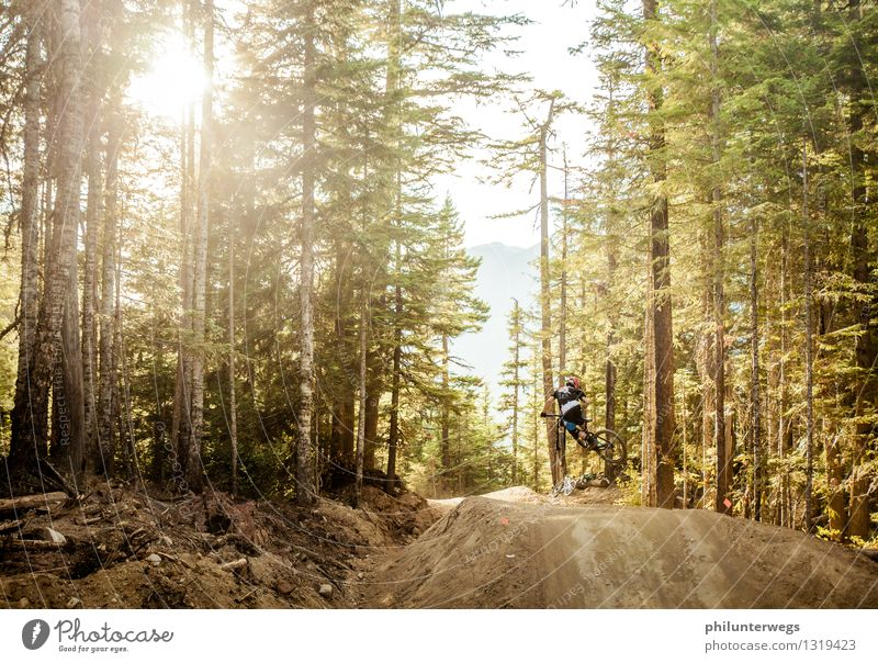 Human being Vacation & Travel Youth (Young adults) Joy Far-off places Forest Mountain Environment Lifestyle Jump Leisure and hobbies Esthetic Cycling