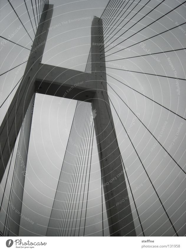 CABLE LAYER Cable Sky Bad weather River Bridge Transport Navigation Watercraft Line Large Gray Black White Might Shanghai China Suspension bridge Aspire