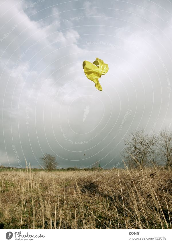 free your soul Textiles Cloth Tailor Hover Airplane Airy Judder Ghosts & Spectres  Clouds Bad weather Frozen Snapshot Common Reed Meadow Horizon Peace Clothing