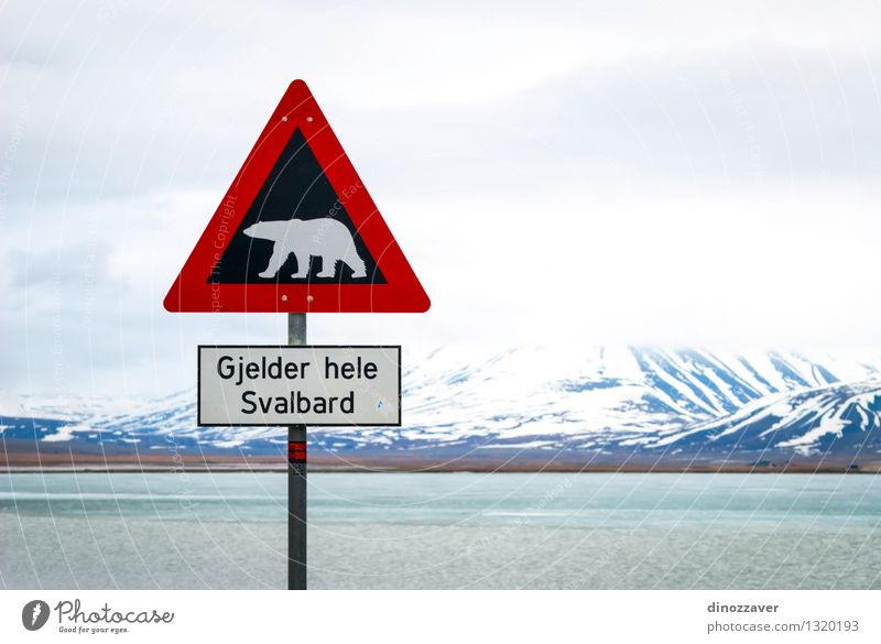 Polar bear sign Sky Nature Vacation & Travel White Red Landscape Clouds Animal Winter Mountain Street Snow Wild Trip Adventure Safety