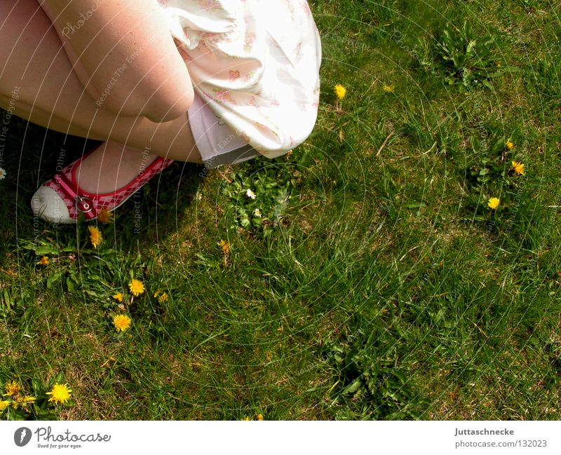 Woman Girl Green Red Summer Relaxation Meadow Spring Garden Footwear Contentment Lawn Peace Expectation Crouch Helpless