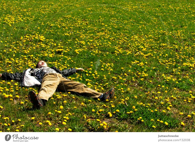 Nature Green Summer Joy Yellow Relaxation Meadow Spring Freedom Dream Contentment Sleep Break Lie Fatigue