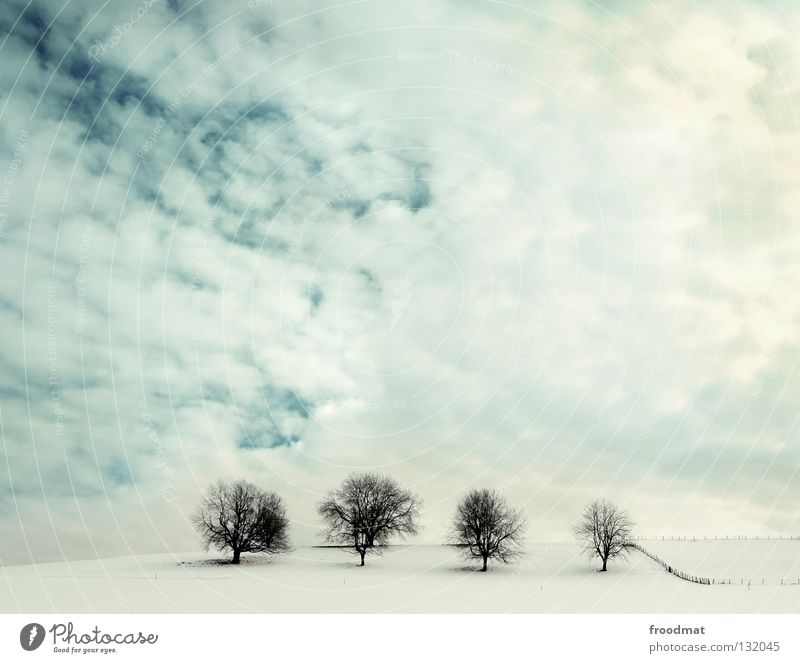 four of a kind Switzerland Hill Tree Leafless Cold Clouds Minimal 4 Fence Swing Background picture Winter Clean Tidy up Calm Relaxation White Loneliness