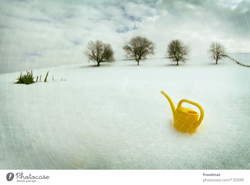 Nature Water Beautiful Sky White Tree Winter Calm Clouds Loneliness Yellow Cold Snow Relaxation Grass Bright