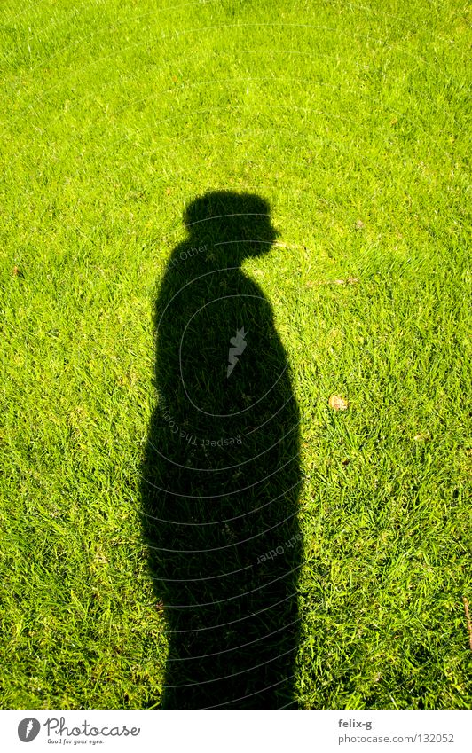 Lawn man #3 Grass Hand Drop shadow Light Green Bright green Shadow Human being Legs Sun Contrast