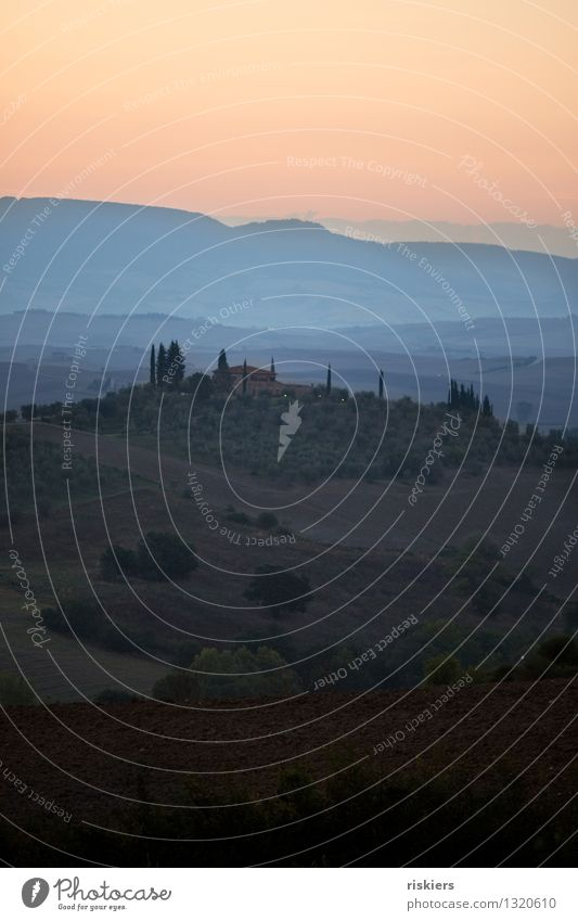 Dawn in the Val d´Orcia Environment Nature Sunrise Sunset Summer Field Calm Idyll Tuscany Vacation & Travel Italy Colour photo Exterior shot Deserted Morning