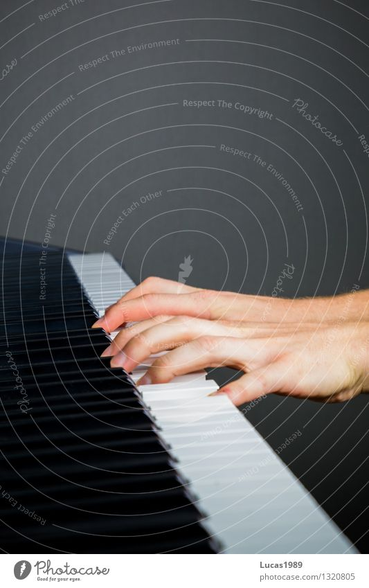 Human being Hand Art Music Study Fingers Concentrate Concert Sports Training Artist Musical instrument Piano Musician Practice Keyboard Chord