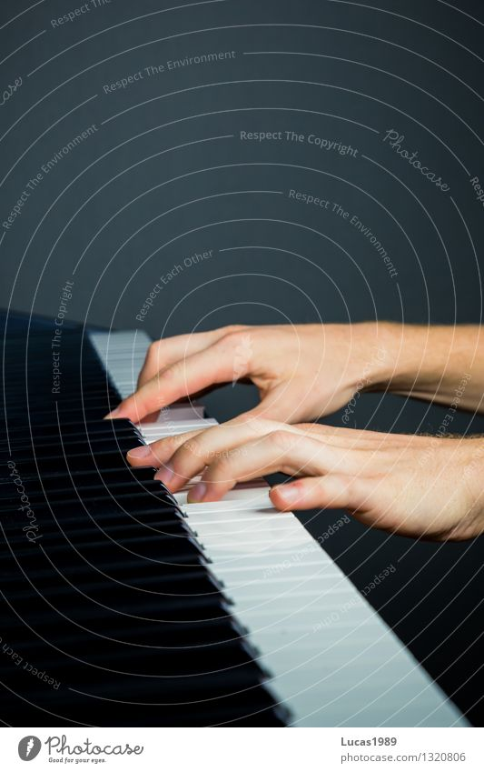 Human being White Black Playing Art Music Fingers Concentrate Student Testing & Control Concert Artist Keyboard Piano Musician Practice