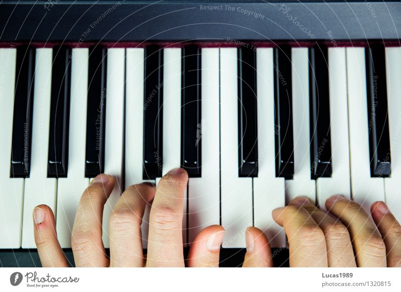 Piano playing hands schuler music school Lessons practice Study by hand Fingers Artist Music Listen to music Concert Musician Keyboard Playing Joy Concentrate