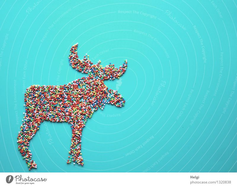 Moose figure decorated with small colourful sugar balls on turquoise background Food Candy Granules Coulored sugar candy Christmas & Advent Animal Sign Stand