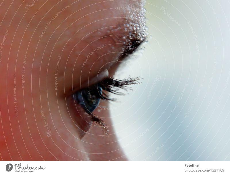 Human being Child Water Girl Face Eyes Natural Feminine Drops of water Wet Elements Near Snapshot Eyelash Eyebrow