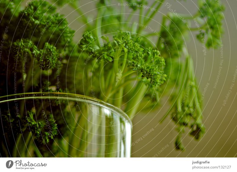 parsley Herbs and spices Kitchen Vase Fresh Food Green Colour pertersily kitchen herb Bouquet Glass Water Nutrition Aromatic