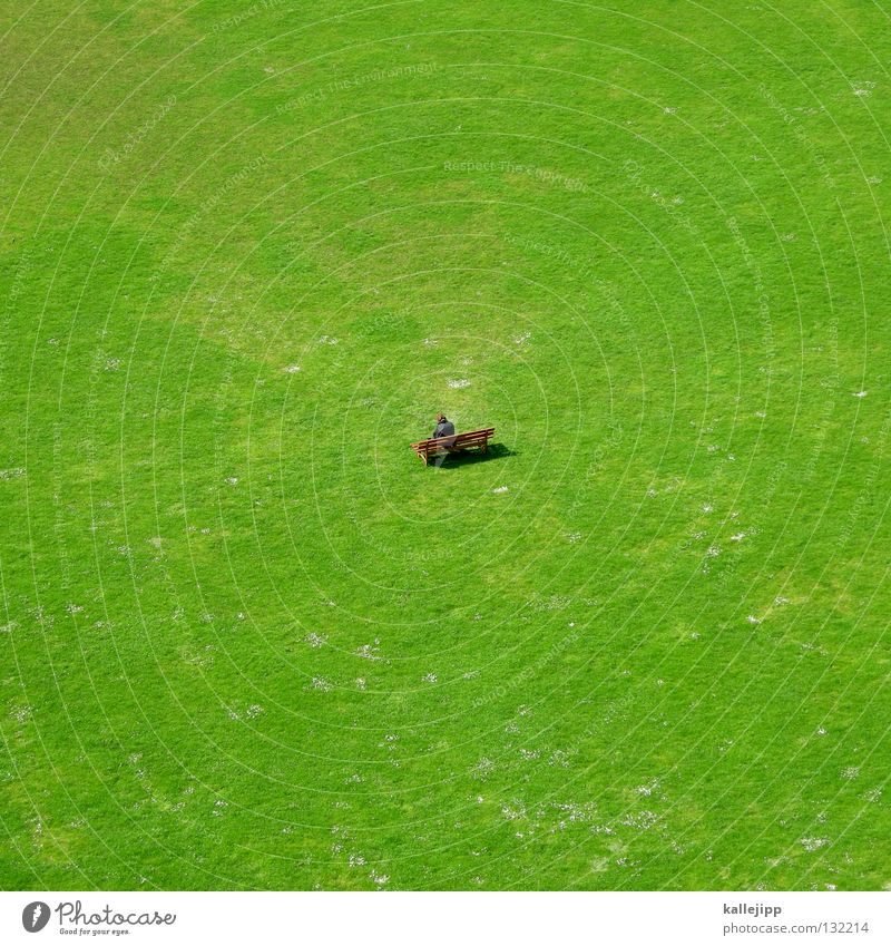 Human being Man Green Relaxation Life Meadow Grass Small Garden Above Park Field Growth Back Large Future