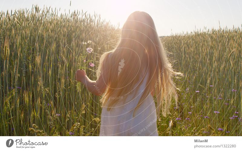 Child Nature Summer Relaxation Landscape Girl Warmth Love Emotions Happy Freedom Going Bright Contentment Field Infancy