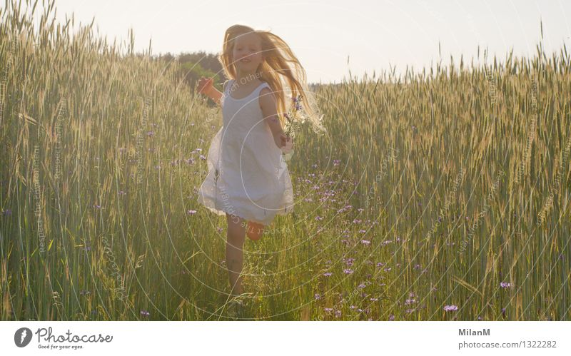 Human being Child Nature Summer Joy Girl Warmth Life Movement Healthy Happy Bright Contentment Field Fresh Free
