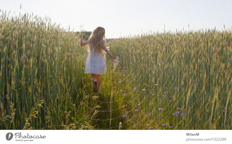 Human being Child Nature Summer Joy Girl Warmth Movement Happy Laughter Freedom Contentment Field Infancy Blonde Happiness