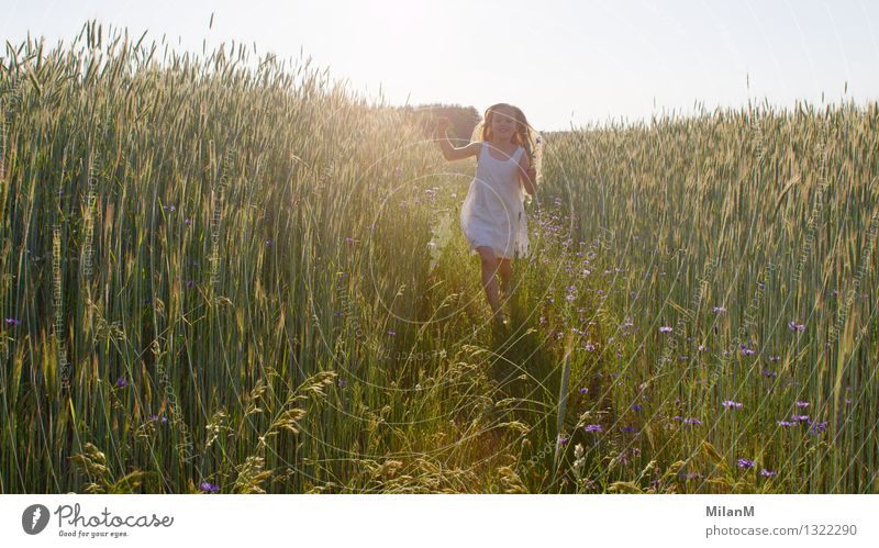 summer air Human being Girl 1 3 - 8 years Child Infancy Sun Sunlight Beautiful weather Field Movement Discover Smiling Illuminate Blonde Fragrance Free