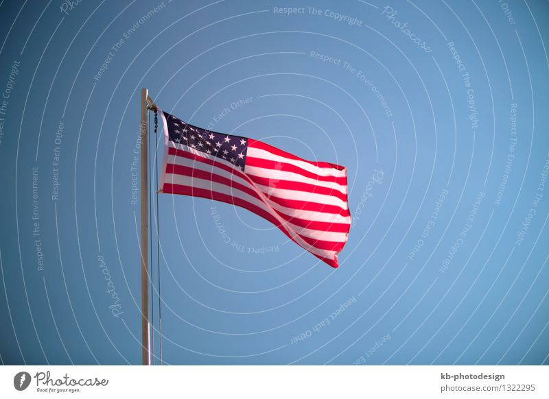 Vacation & Travel Far-off places Freedom Business Tourism Wind USA Flag Nationalities and ethnicity