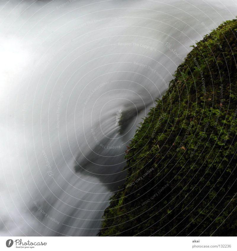 hydrodynamics Beautiful Mountain Landscape Water Brook Waterfall Cold Soft Blue Mountain stream Black Forest Highlands gray filter Long exposure Dreisam