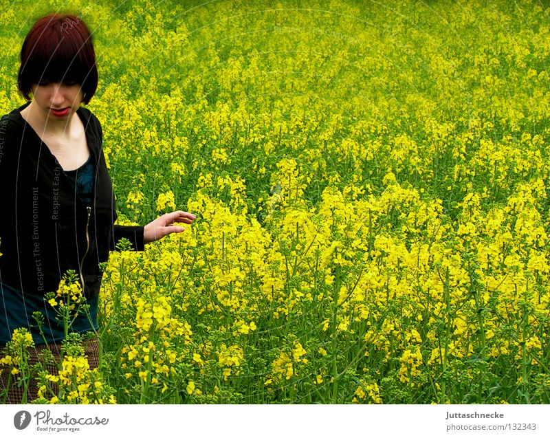 Woman Nature Flower Green Summer Black Yellow Meadow Blossom Grass Field Going Peace Middle Blossoming Doomed
