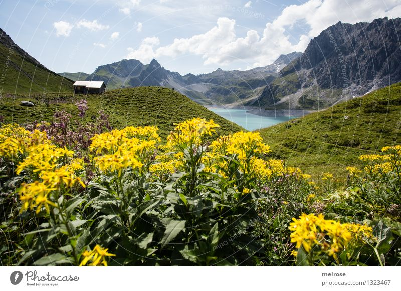 Sky Nature Vacation & Travel Green Beautiful Summer Water Relaxation Landscape Clouds Mountain Yellow Grass Lake Tourism Idyll