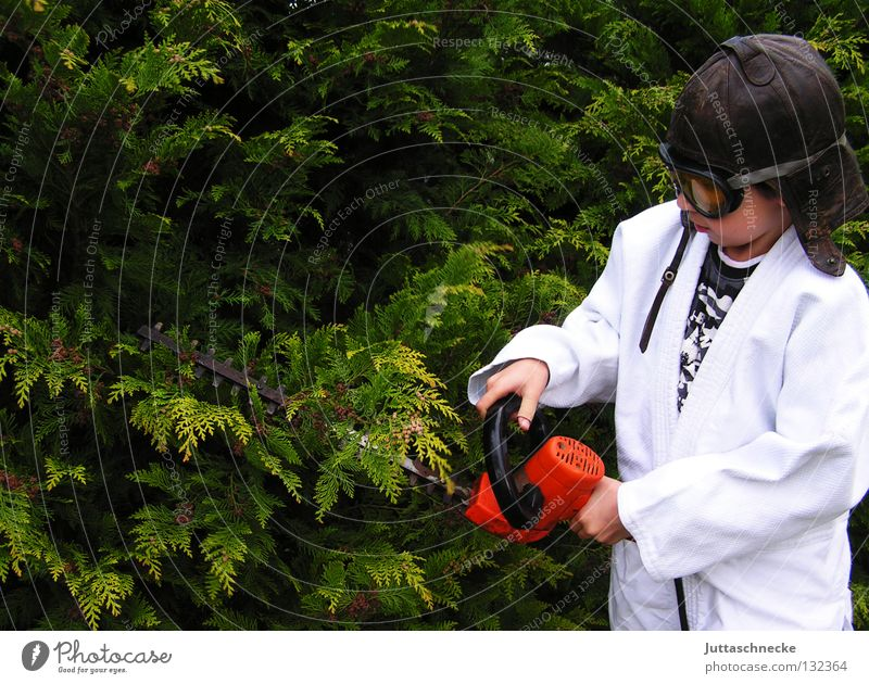 The tree surgeon Child Boy (child) Hedge shears Dangerous Bans Saftey goggles Gardening Gardener Electric Work and employment Surgeon Cut Bushes Thuja Tree