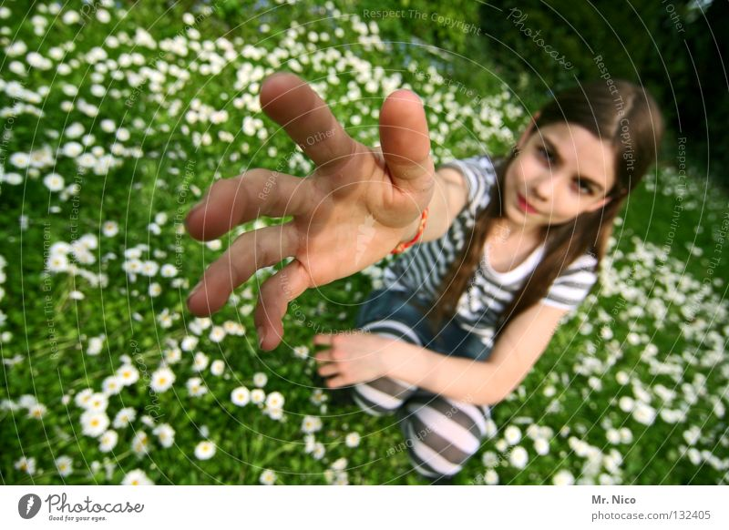 Miss Take Girl Beautiful Earnest Single-minded Resolve Long-haired Brown Brunette Posture Knee Striped Crouch Crouching position Crooked Daisy Meadow Wide angle