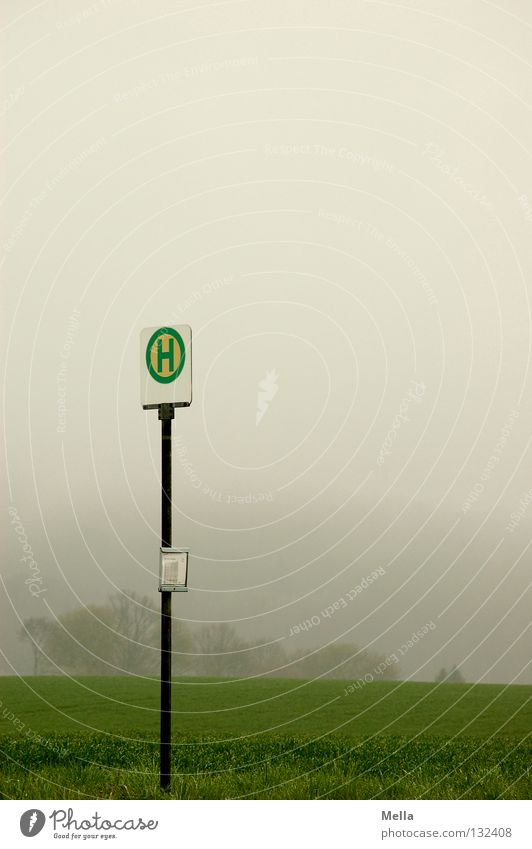 In the void Environment Bad weather Fog Field Transport Public transit Signs and labeling Gloomy Gray Green Moody Loneliness Boredom Stop (public transport)