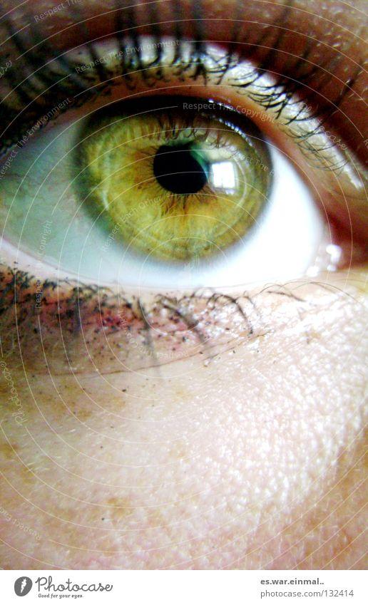 Green Black Eyes Brown Freckles Eyelash Pupil Minerals Cosmetics Mascara Iris Amber
