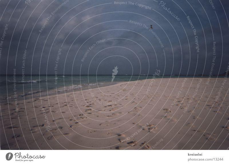 Traces in the sand Ocean Vacation & Travel Footprint Calm Beach Sand Sky