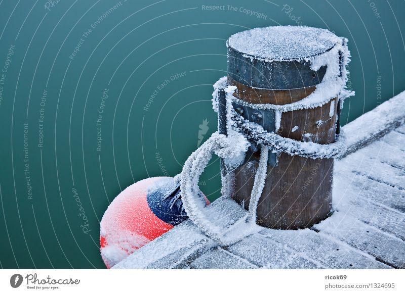 bollards Winter Rope Water Ice Frost Coast Baltic Sea Harbour Cold Colour Nature Calm Bollard Fender Footbridge Jetty Snow Dew Poel Island
