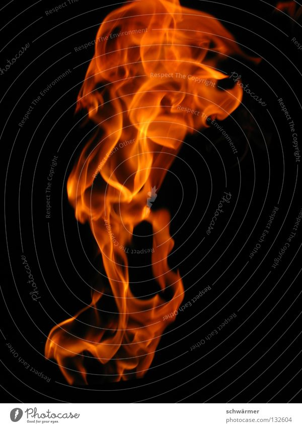 firescream Fire Energy Nature Hot Freedom Black Wild Dark Flame Warmth Scream Blaze Anger Aggravation Power Force jut