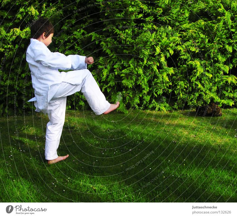 Child White Green Sports Boy (child) Jump Playing Contentment Japan Sports Training Fight Blow Practice Beat Martial arts Defensive