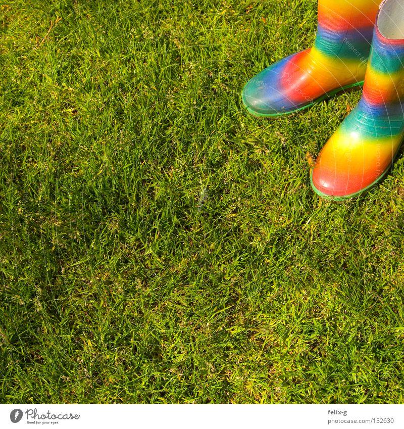 Green Colour Meadow Rain Footwear Wet Grass surface Boots Rubber boots
