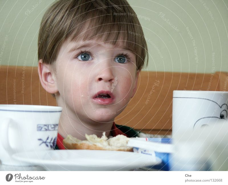 Child Eyes Nutrition Small Eating Table Kitchen Open Trust Concentrate Appetite Breakfast Cup Toddler Plate Expectation