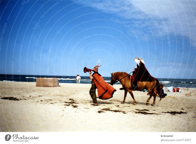 Attention, attention! Vacation & Travel Beach Horse Stage play Group Sand King announcement Sky Baltic Sea