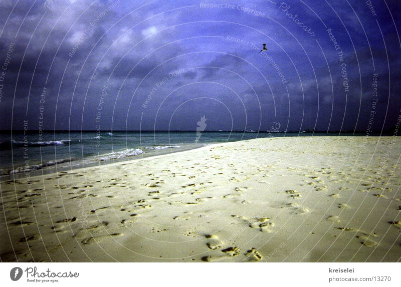 Sky Ocean Blue Beach Vacation & Travel Loneliness Sand Footprint Tracks