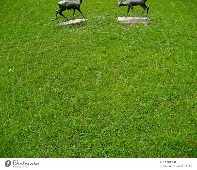 Meadow Rain Metal Statue Wild animal To feed Mammal Cut Roe deer Bronze Buck