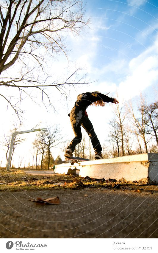 boardslide Action Skateboarding Contentment Jump Striped Tar Concrete Light Tree Wide angle Youth (Young adults) Sports Speed Rotation Park Boardslide Funsport