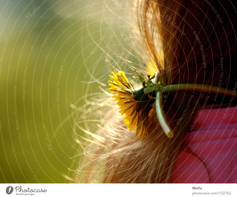 Human being Nature Girl Flower Green Plant Yellow Blossom Spring Happy Hair and hairstyles Pink Environment Happiness Sweet Joie de vivre (Vitality)
