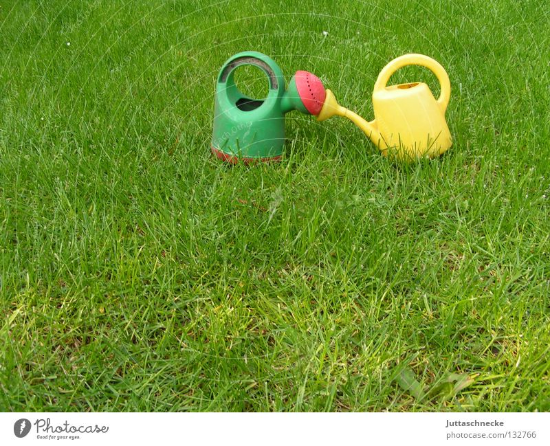 kiss Jug Watering can Green Yellow Kissing Meadow Grass Cast Gardener Gardening Toys Growth Wet Summer Love Lawn Juttas snail Nature Exterior shot