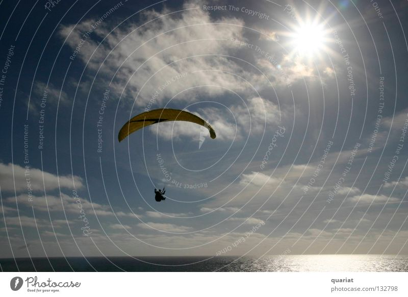 freedom Summer Paragliding Extreme sports Denmark Sports Freedom Happy Sun Joy