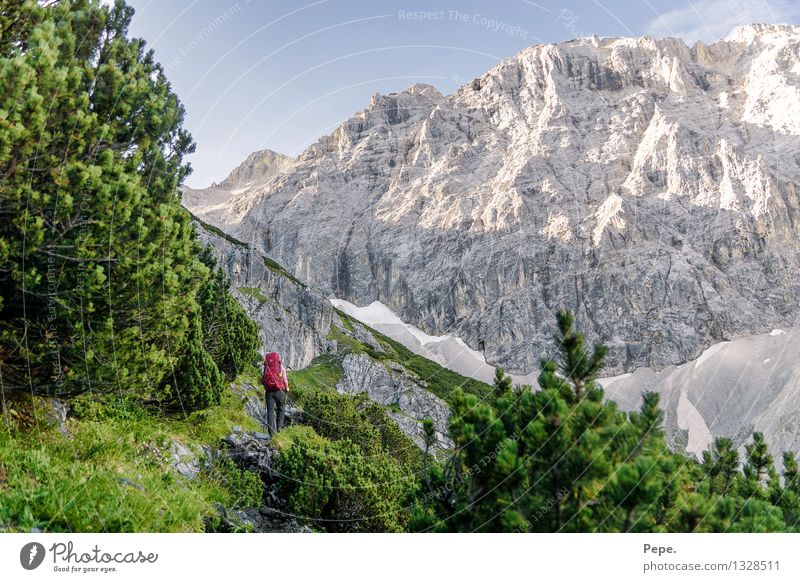 Nature Green Tree Red Landscape Mountain Environment Lanes & trails Sports Rock Hiking Peak Alps